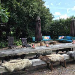 Luxe vakantiehuizen voor groepen op Walcheren tuin Mariekerke
